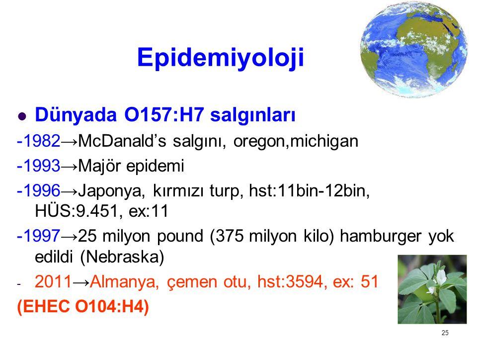 Epidemiyoloji Dünyada O157:H7 salgınları