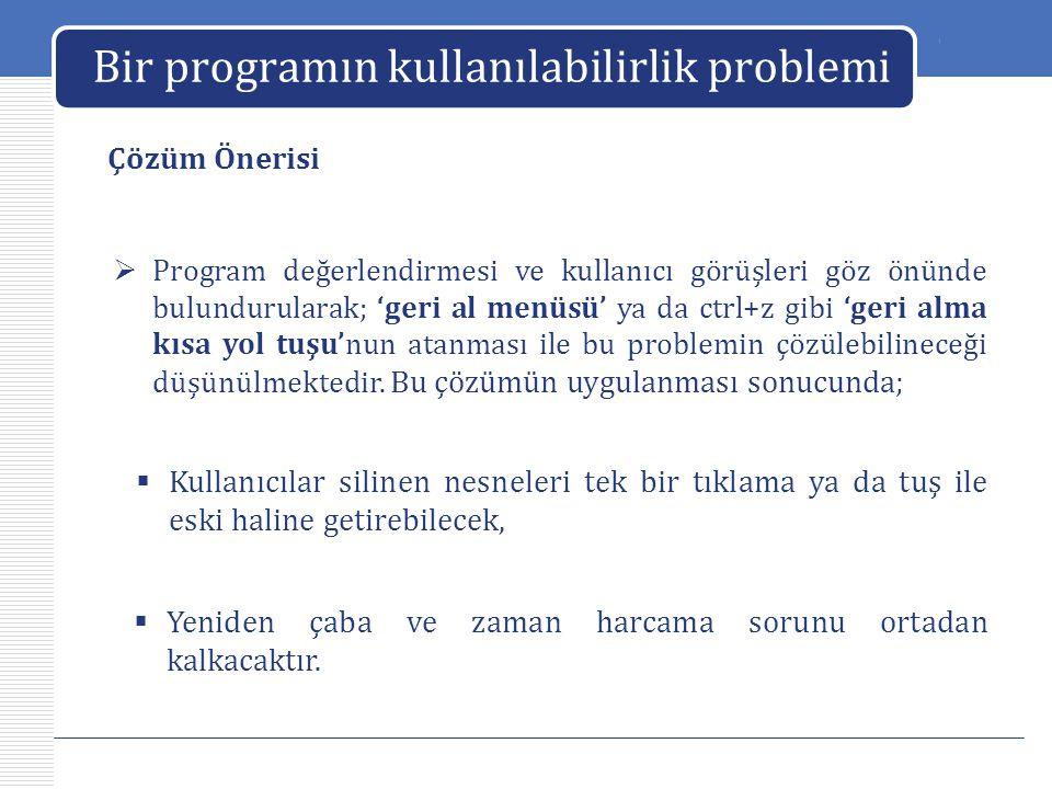 Bir programın kullanılabilirlik problemi