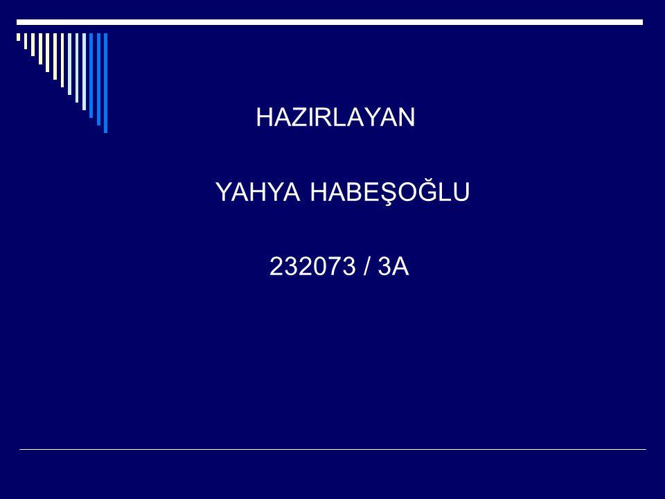 HAZIRLAYAN YAHYA HABEŞOĞLU 232073 / 3A