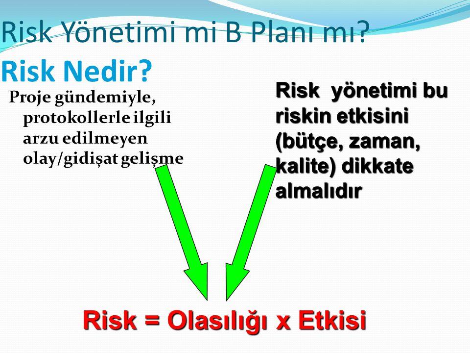 Risk Yönetimi mi B Planı mı Risk Nedir