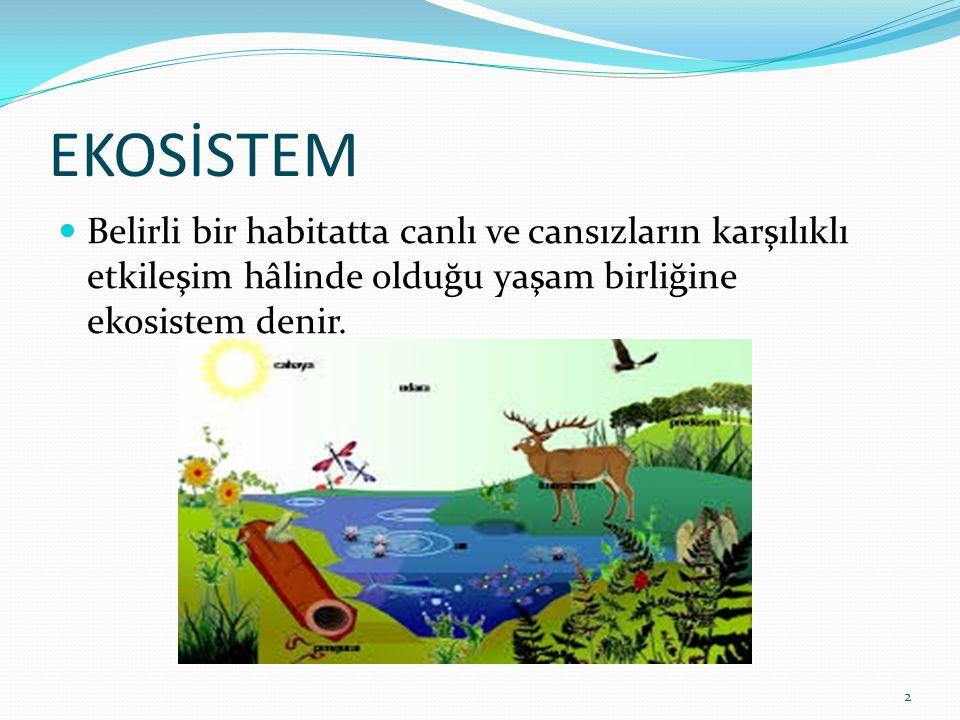 EKOSİSTEM Belirli bir habitatta canlı ve cansızların karşılıklı etkileşim hâlinde olduğu yaşam birliğine ekosistem denir.