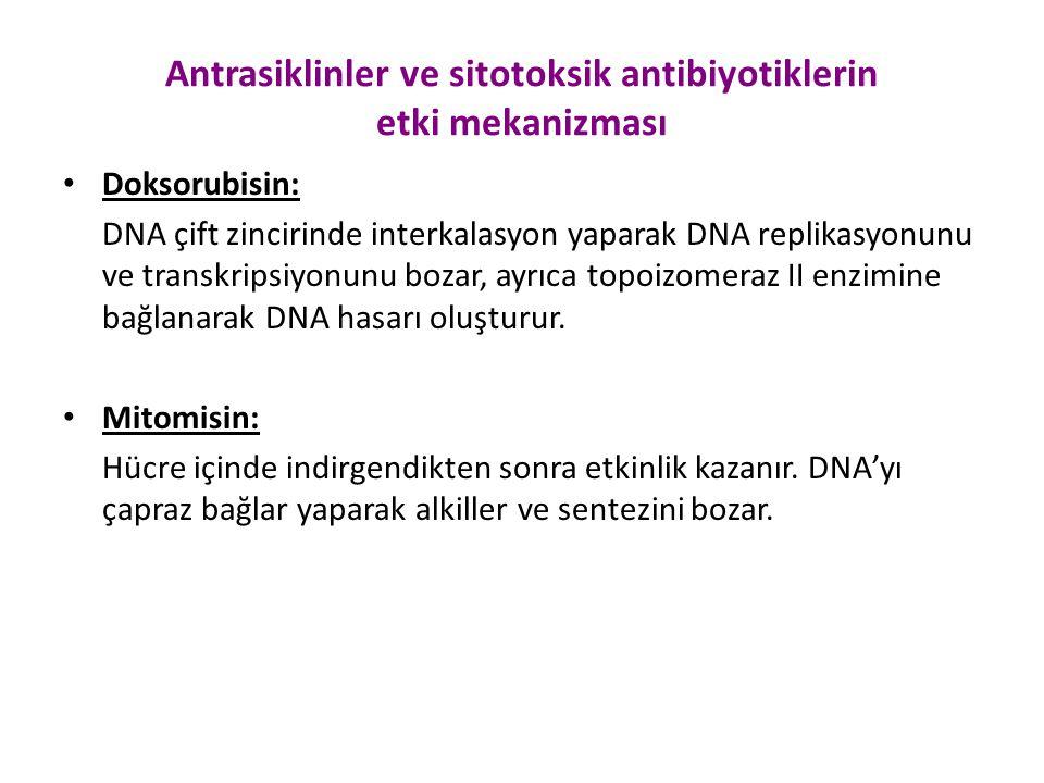 Antrasiklinler ve sitotoksik antibiyotiklerin etki mekanizması