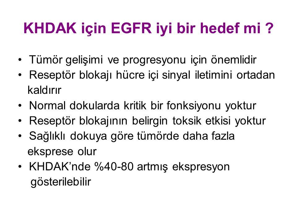 KHDAK için EGFR iyi bir hedef mi