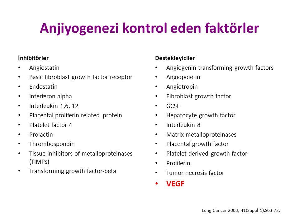 Anjiyogenezi kontrol eden faktörler