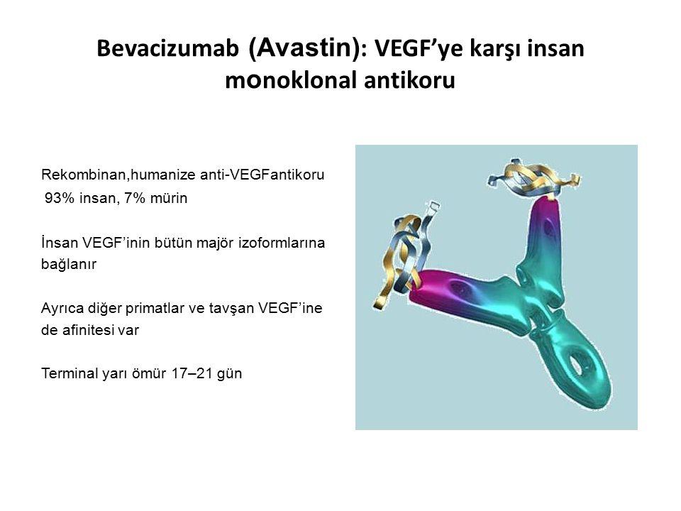 Bevacizumab (Avastin): VEGF'ye karşı insan monoklonal antikoru