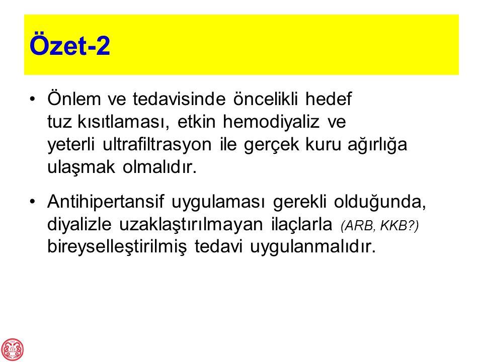 Özet-2