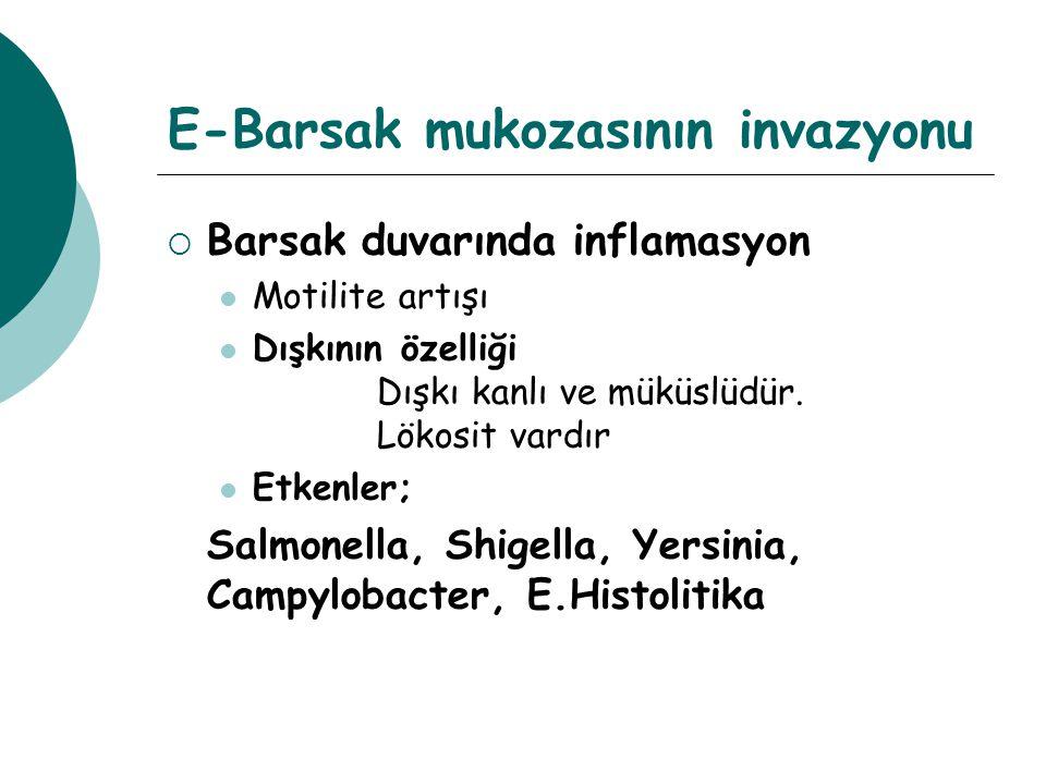 E-Barsak mukozasının invazyonu