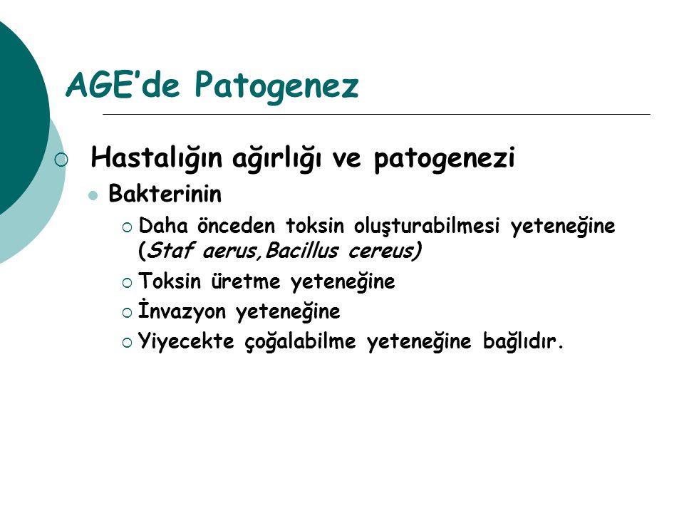 AGE'de Patogenez Hastalığın ağırlığı ve patogenezi Bakterinin