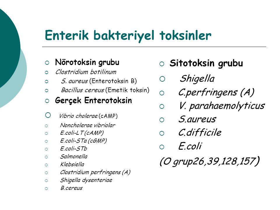 Enterik bakteriyel toksinler
