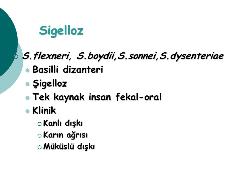 Sigelloz S.flexneri, S.boydii,S.sonnei,S.dysenteriae Basilli dizanteri