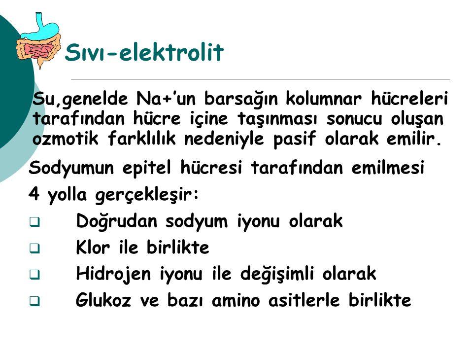 Sıvı-elektrolit