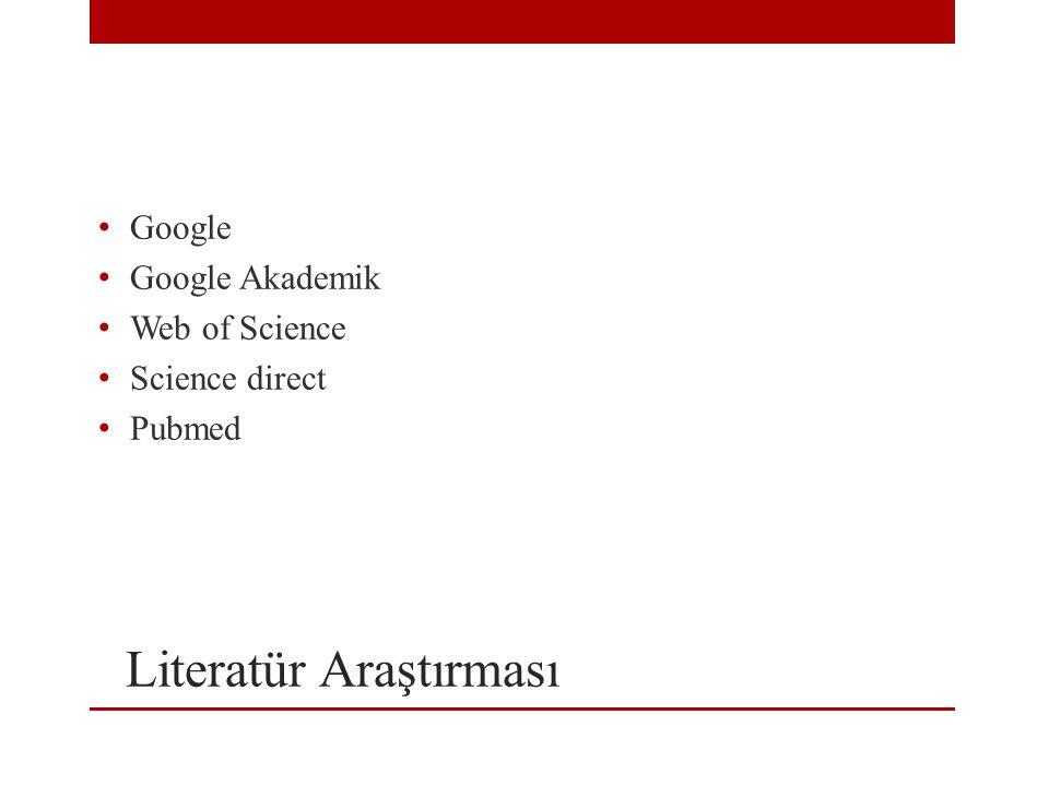 Literatür Araştırması