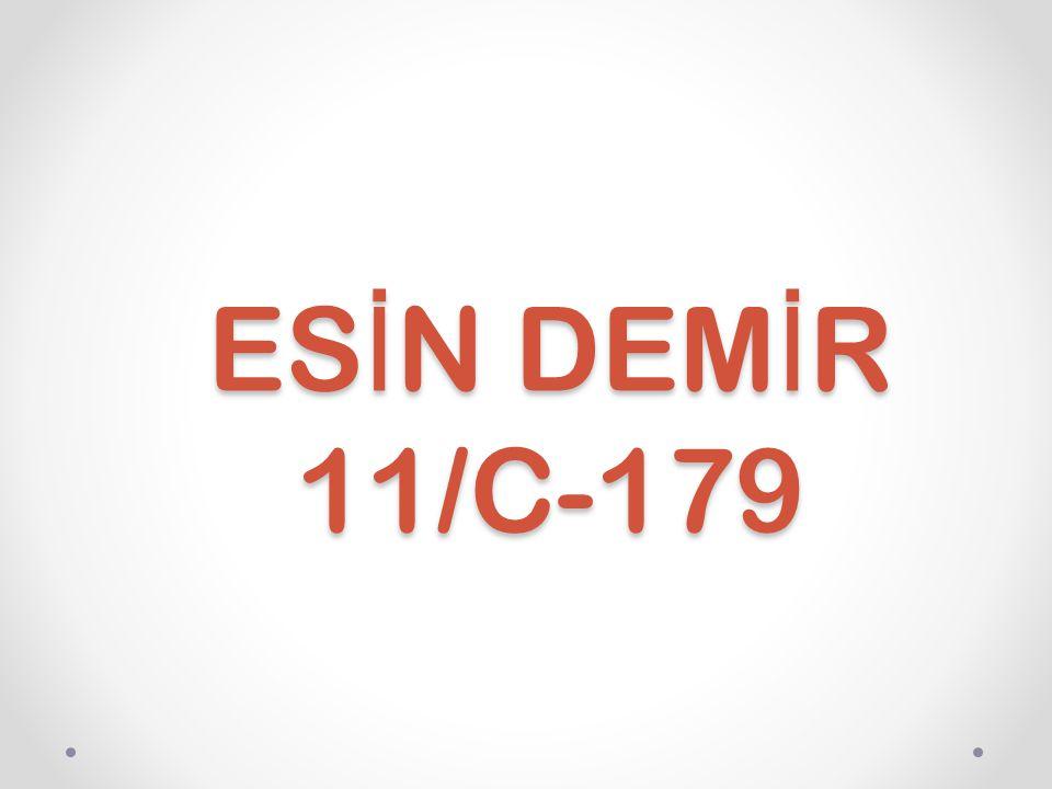 ESİN DEMİR 11/C-179