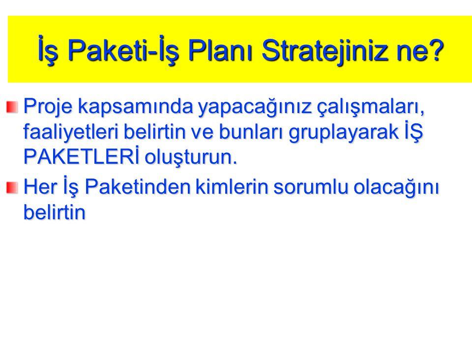 İş Paketi-İş Planı Stratejiniz ne