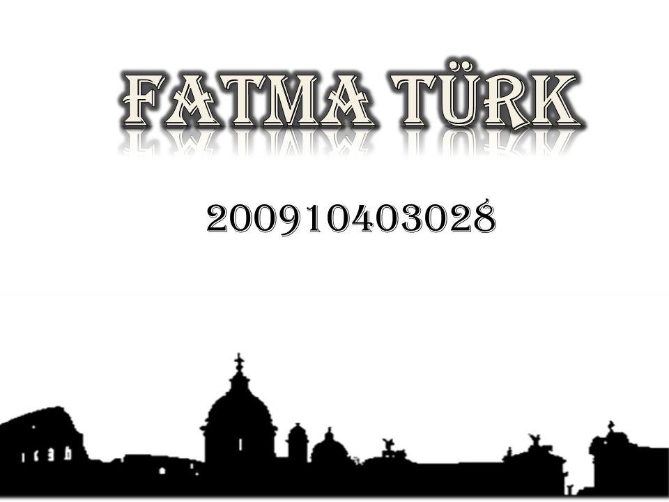 FATMA TÜRK 200910403028