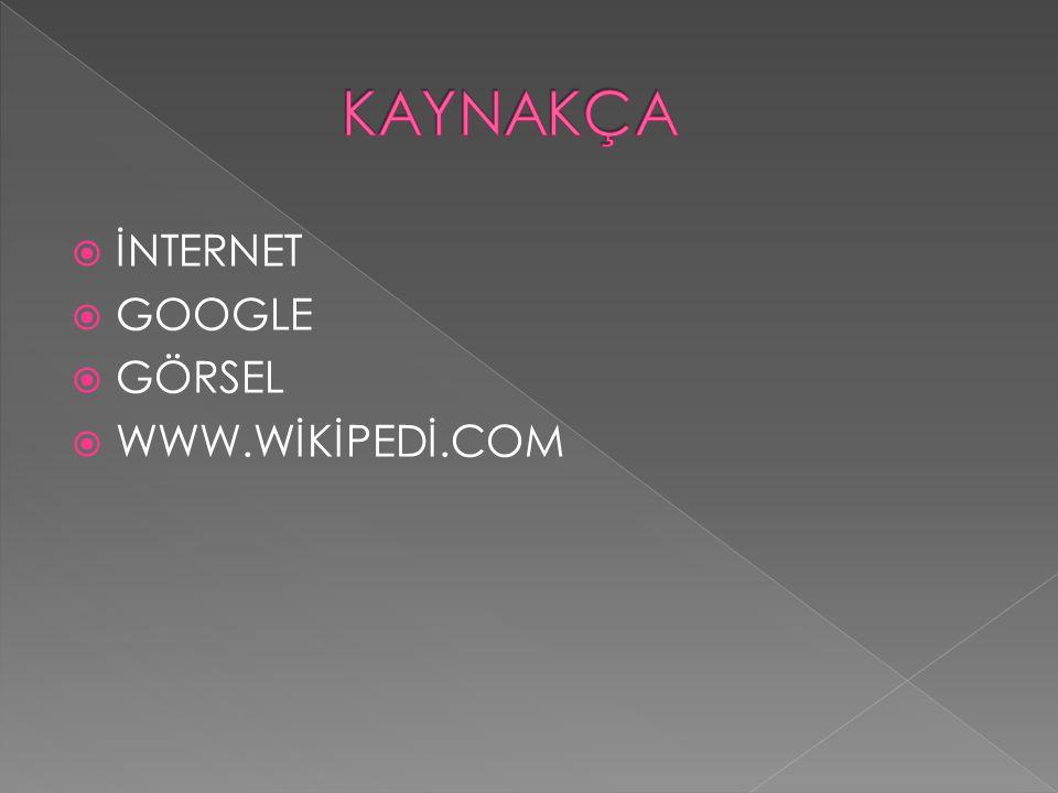 KAYNAKÇA İNTERNET GOOGLE GÖRSEL WWW.WİKİPEDİ.COM