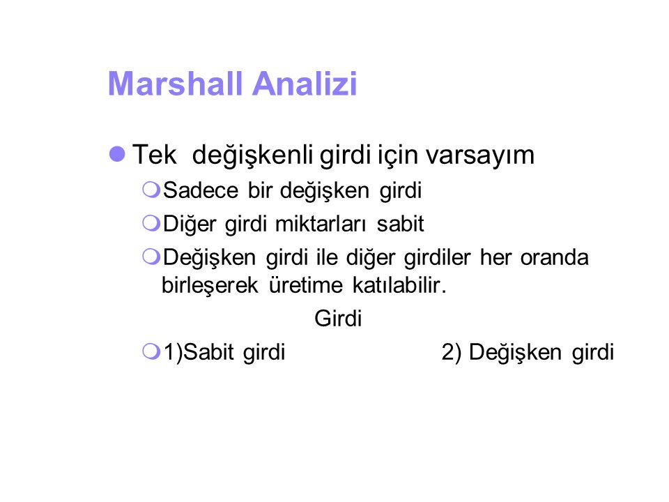 Marshall Analizi Tek değişkenli girdi için varsayım