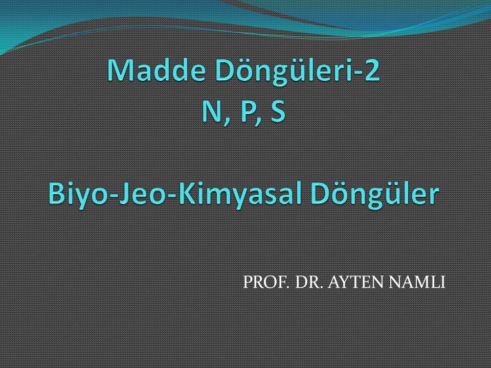 Madde Döngüleri-2 N, P, S Biyo-Jeo-Kimyasal Döngüler