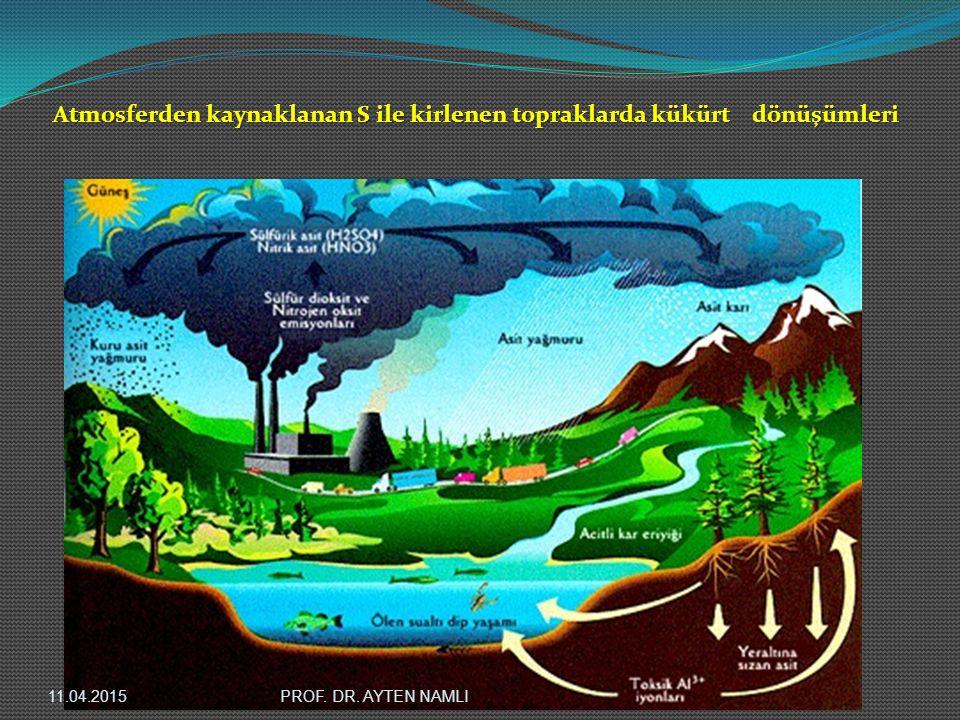 Atmosferden kaynaklanan S ile kirlenen topraklarda kükürt dönüşümleri