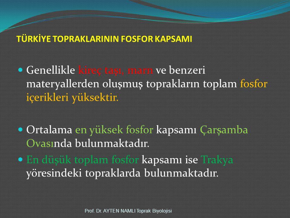TÜRKİYE TOPRAKLARININ FOSFOR KAPSAMI