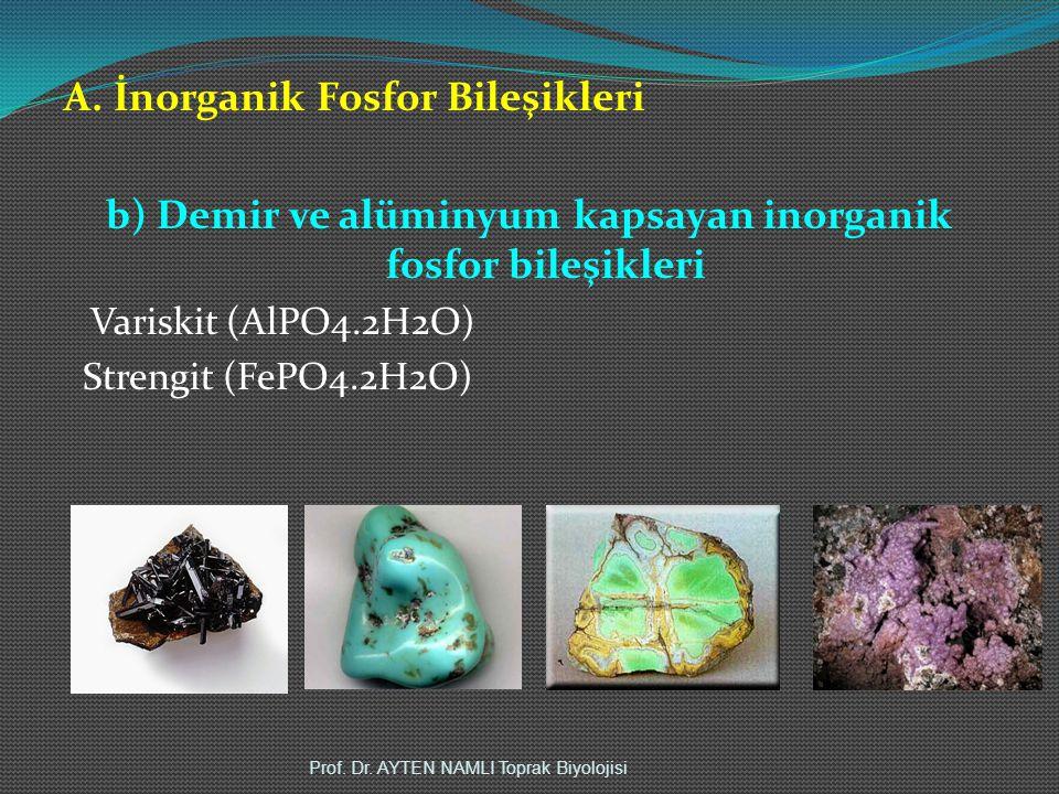 b) Demir ve alüminyum kapsayan inorganik fosfor bileşikleri