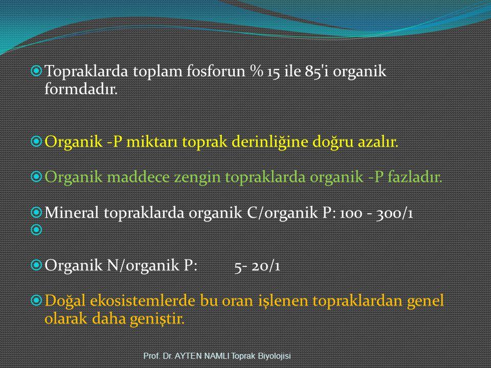 Topraklarda toplam fosforun % 15 ile 85 i organik formdadır.