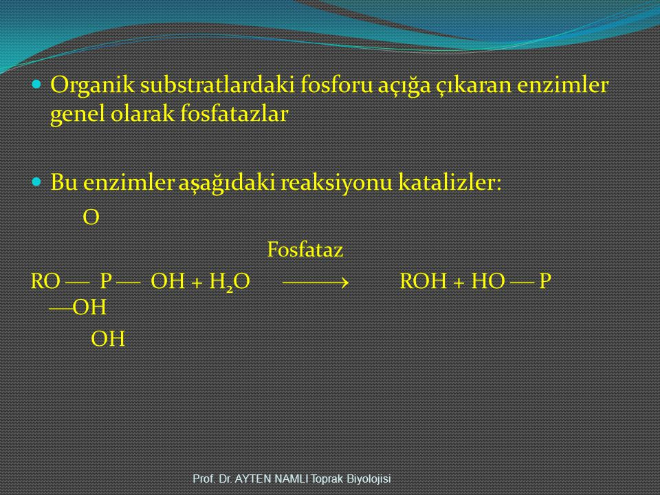 Bu enzimler aşağıdaki reaksiyonu katalizler: O