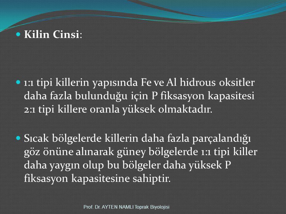 Kilin Cinsi: