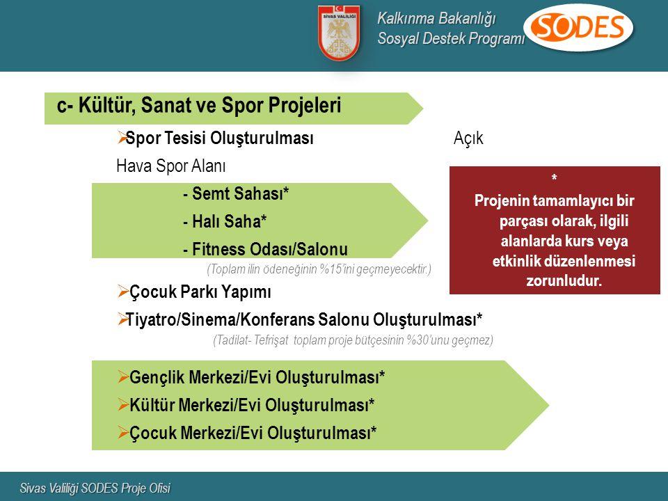 c- Kültür, Sanat ve Spor Projeleri