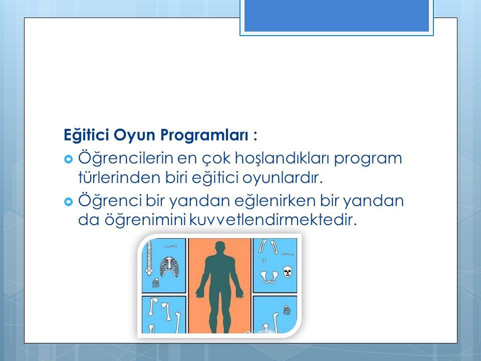 Eğitici Oyun Programları :