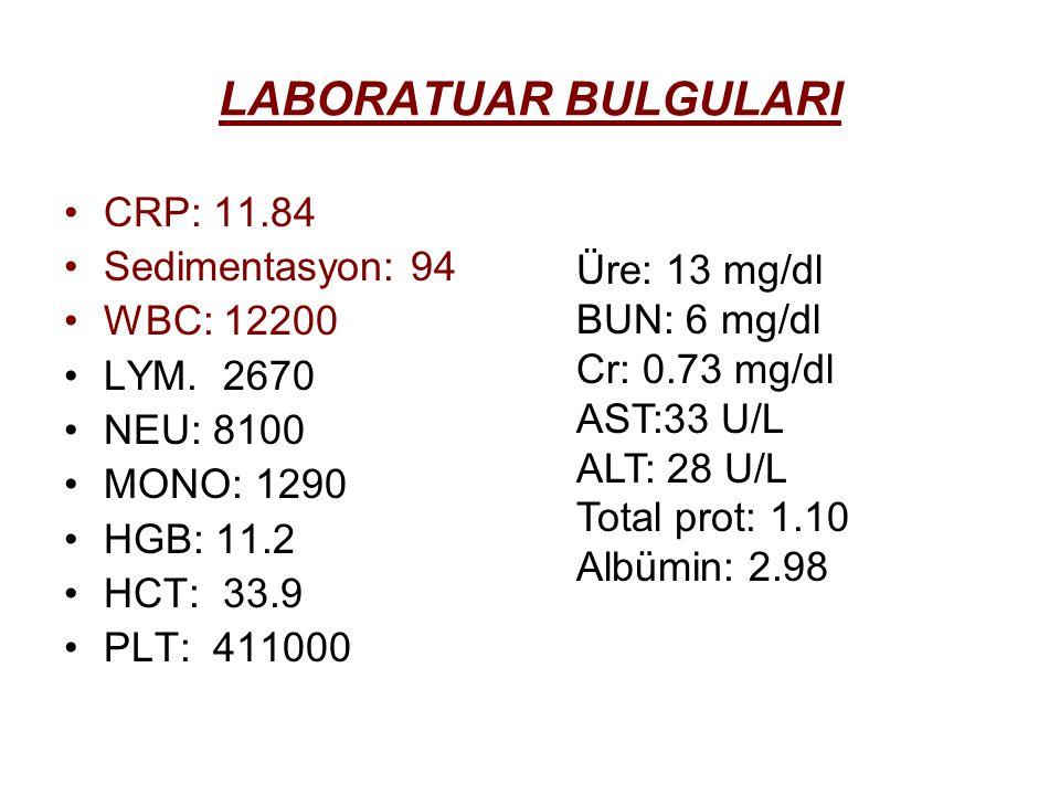 LABORATUAR BULGULARI CRP: 11.84 Sedimentasyon: 94 WBC: 12200
