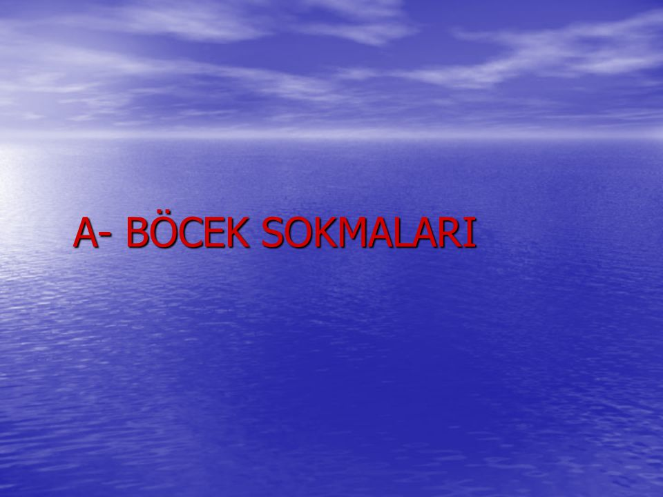 A- BÖCEK SOKMALARI