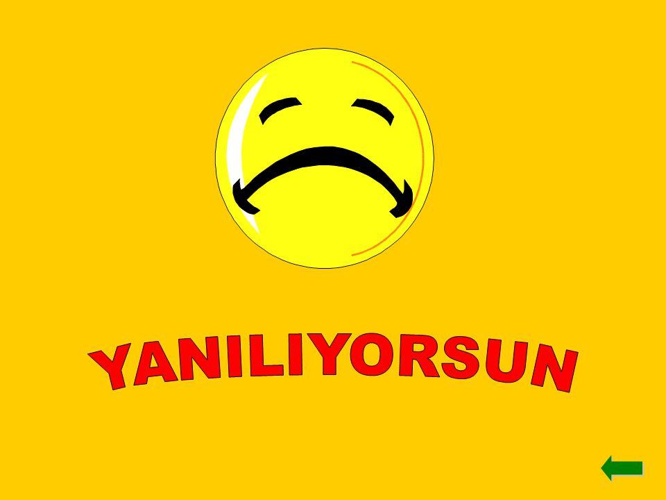 YANILIYORSUN