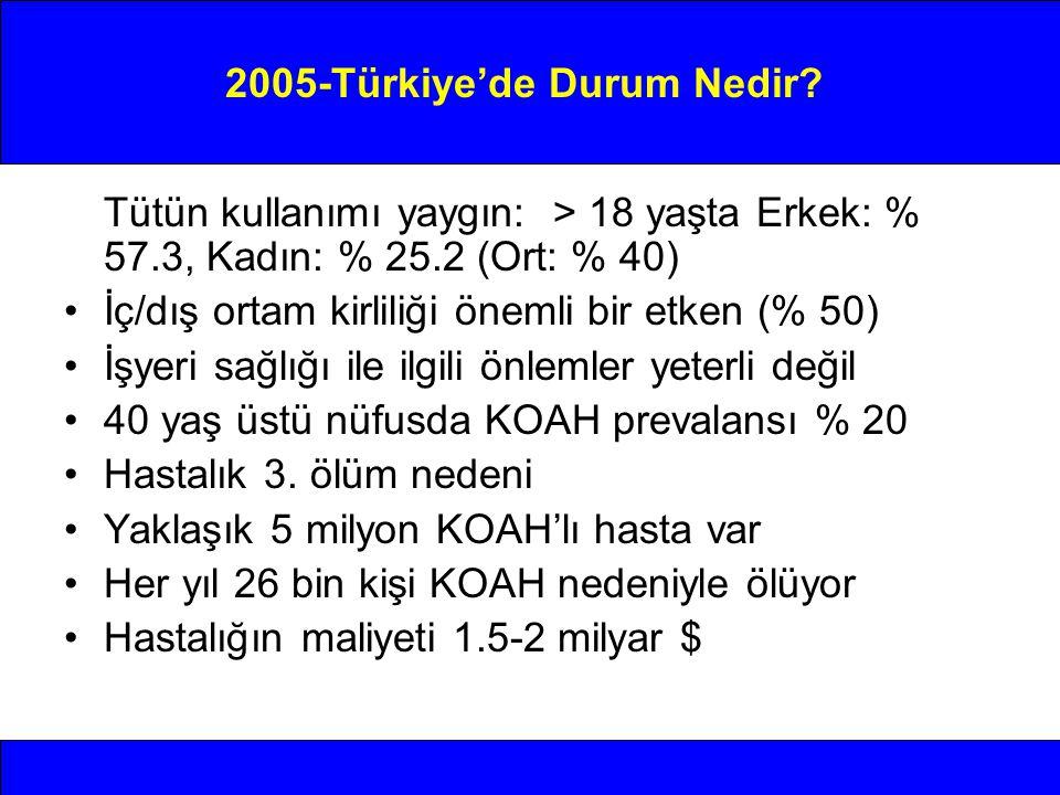 2005-Türkiye'de Durum Nedir