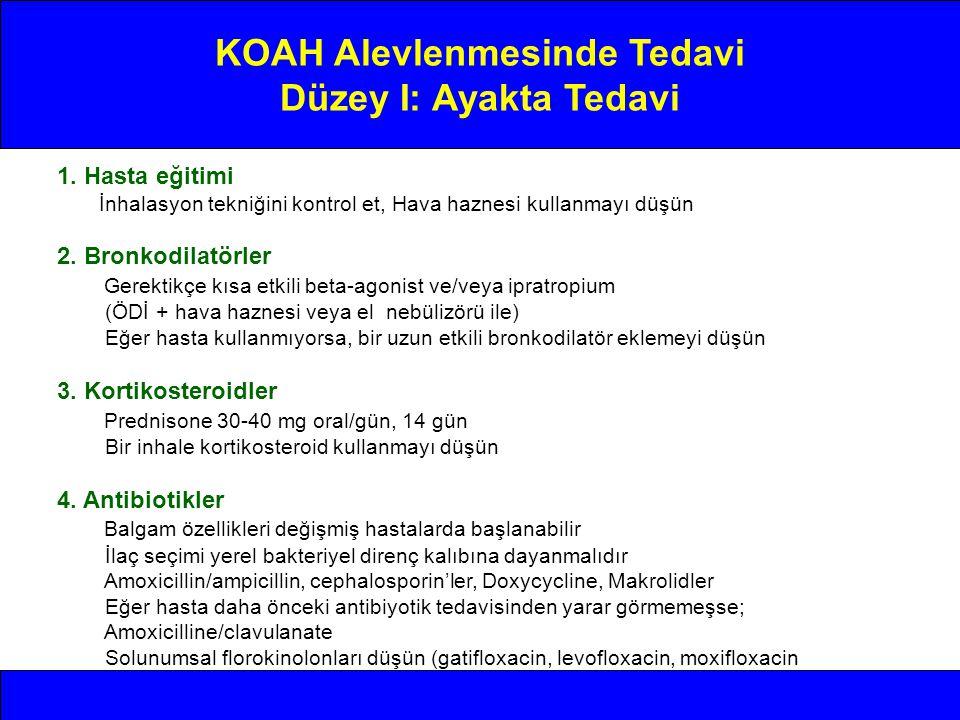 KOAH Alevlenmesinde Tedavi