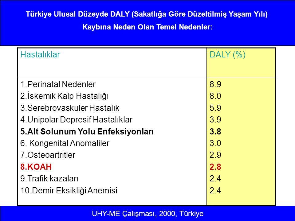 Türkiye Ulusal Düzeyde DALY (Sakatlığa Göre Düzeltilmiş Yaşam Yılı)