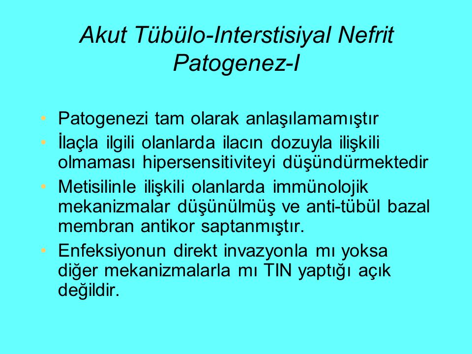 Akut Tübülo-Interstisiyal Nefrit Patogenez-I