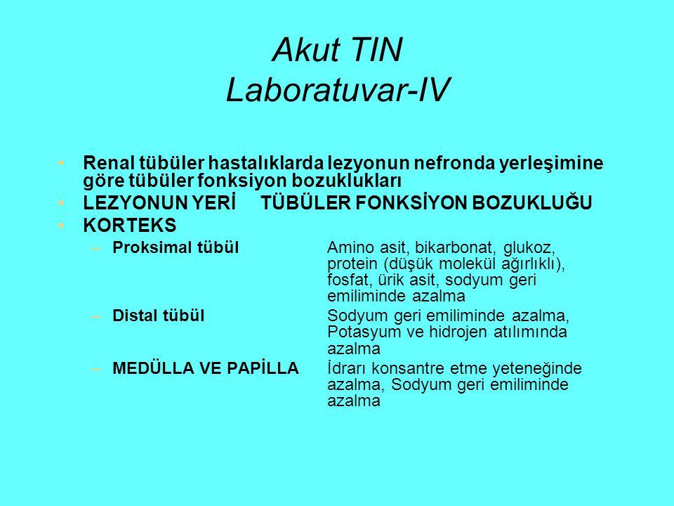 Akut TIN Laboratuvar-IV