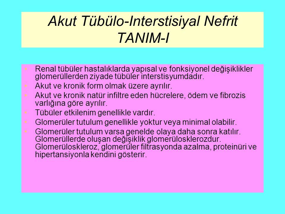 Akut Tübülo-Interstisiyal Nefrit TANIM-I