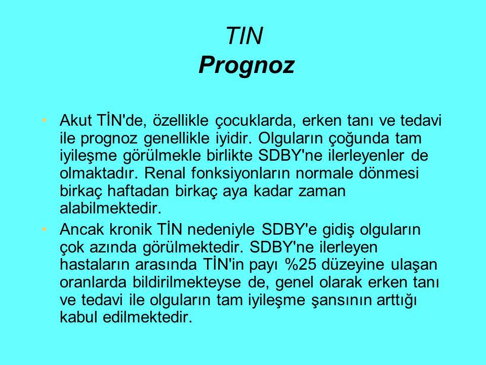 TIN Prognoz