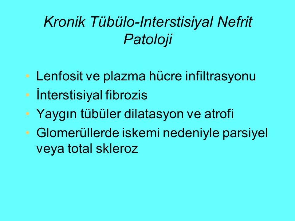 Kronik Tübülo-Interstisiyal Nefrit Patoloji