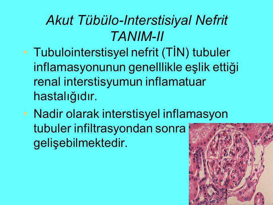Akut Tübülo-Interstisiyal Nefrit TANIM-II