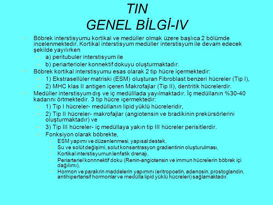 TIN GENEL BİLGİ-IV