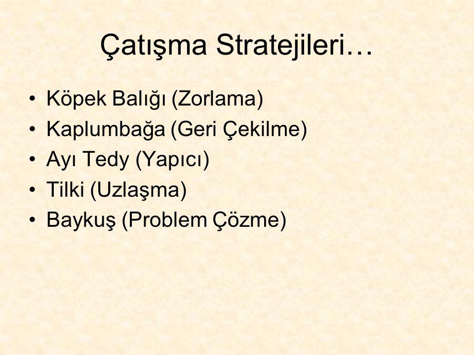 Çatışma Stratejileri…