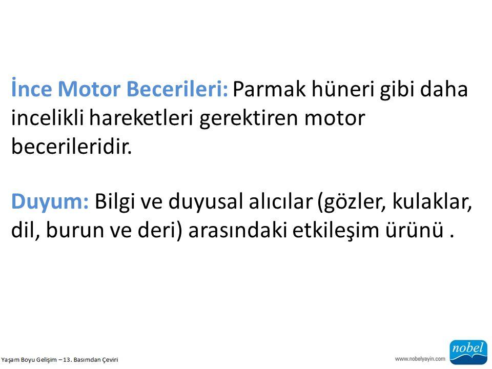 İnce Motor Becerileri: Parmak hüneri gibi daha