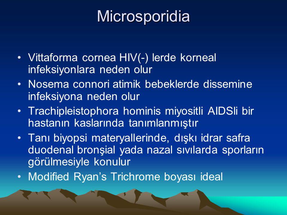 Microsporidia Vittaforma cornea HIV(-) lerde korneal infeksiyonlara neden olur. Nosema connori atimik bebeklerde dissemine infeksiyona neden olur.