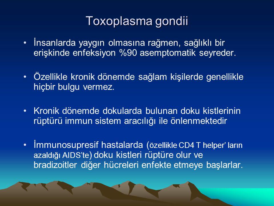 Toxoplasma gondii İnsanlarda yaygın olmasına rağmen, sağlıklı bir erişkinde enfeksiyon %90 asemptomatik seyreder.