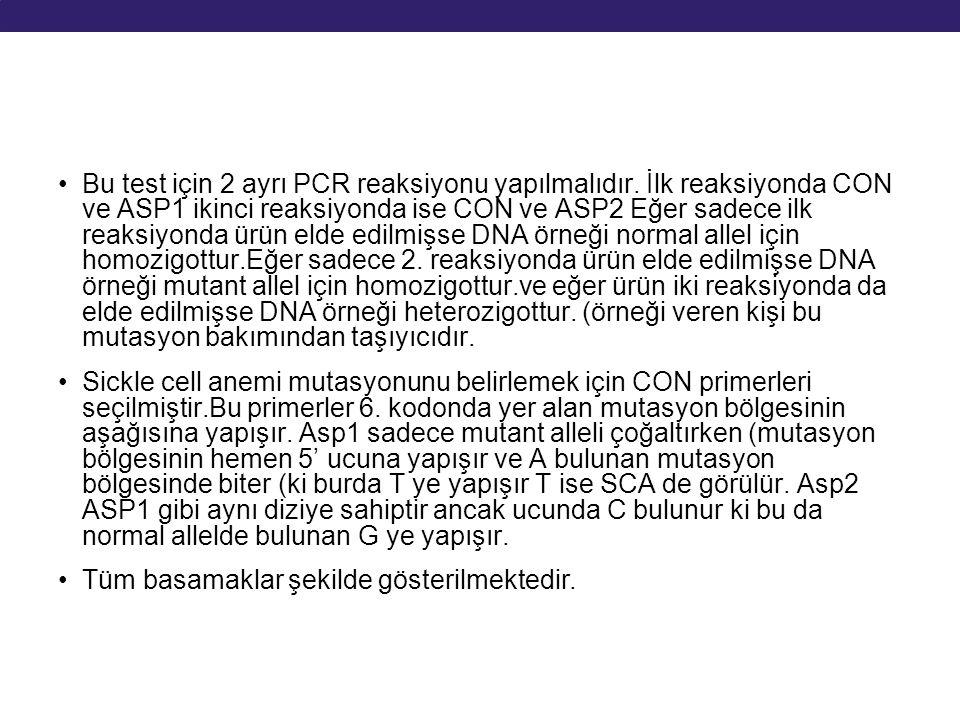 Bu test için 2 ayrı PCR reaksiyonu yapılmalıdır