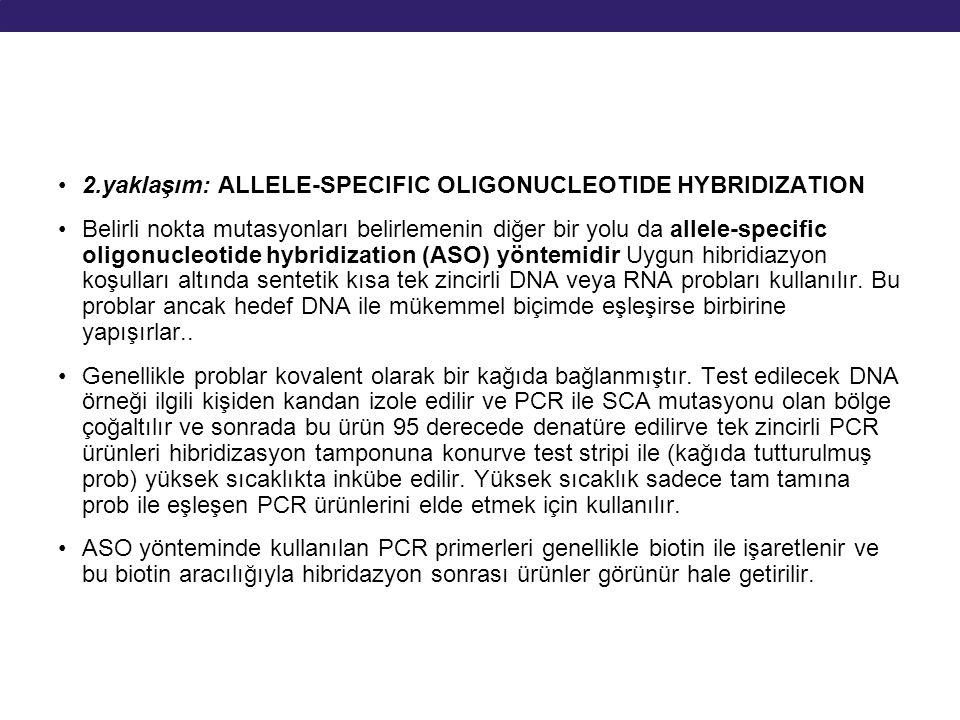 2.yaklaşım: ALLELE-SPECIFIC OLIGONUCLEOTIDE HYBRIDIZATION