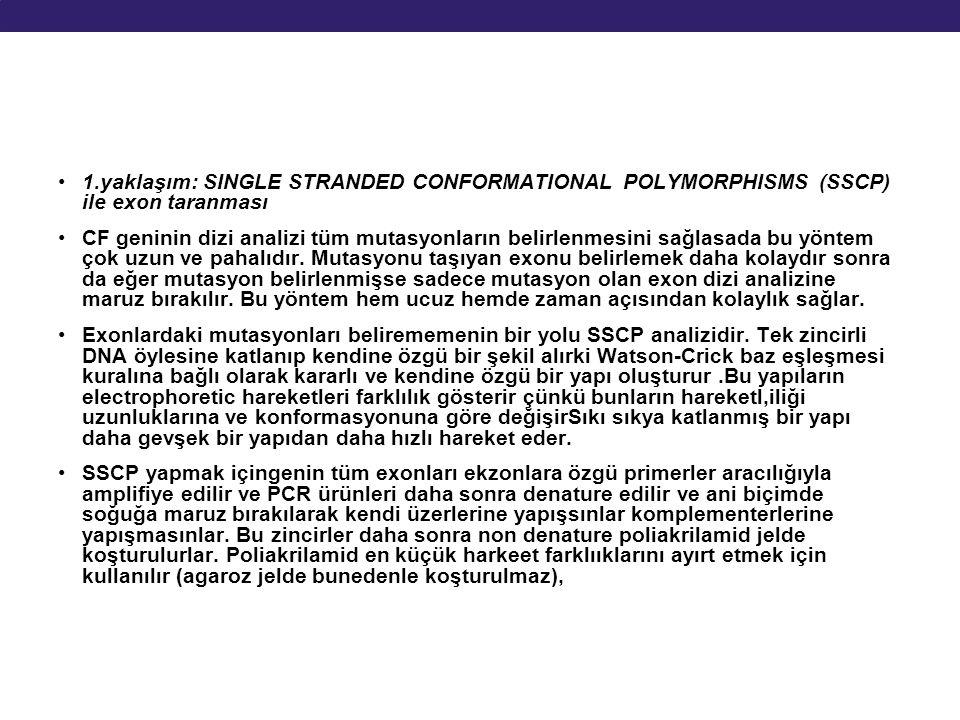 1.yaklaşım: SINGLE STRANDED CONFORMATIONAL POLYMORPHISMS (SSCP) ile exon taranması